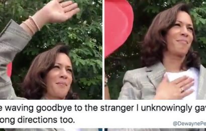 "This Meme Of Kamala Harris ""Waving Goodbye"" Is 50% Shady, 50% Pure, And 100% Hysterical"