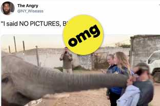 12 Hilarious Epic Fails From This Week