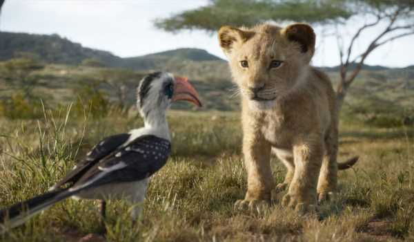 Don't Worry: No Animals Were Harmed In 'The Lion King' Remake