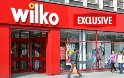 Wilko is flogging discount 'Viagra' aimed at both men and women for £3 – The Sun