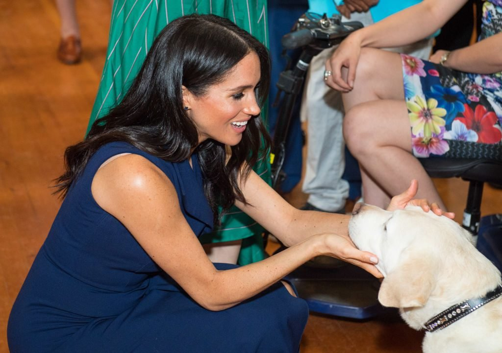How Many Pets Do Meghan Markle and Prince Harry Have?