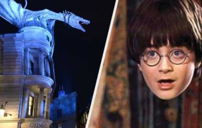 "Only True ""Harry Potter"" Fans Have Done All These Things"