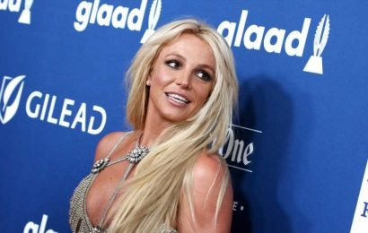 Britney Spears Posted a Rare Photo of Her Sons & They're Almost as Tall as Her