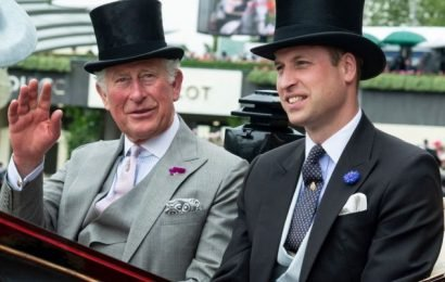 Prince William To Be King Over Prince Charles? Inside The Shocking New UK Poll