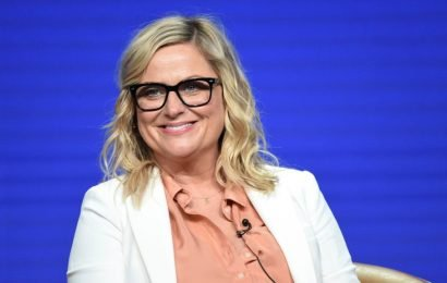 """Amy Poehler Weighs In On Fox's Hostless Emmys Plan: """"It Seems Cool"""" – TCA"""