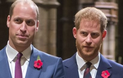 "So, Apparently Prince Harry Went ""Ballistic"" and Accused William of Wrecking His Relationship with Meghan"