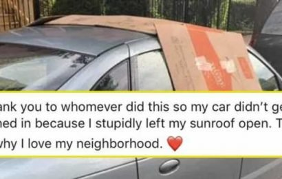 15 People That Prove A Little Help Goes A Long Way
