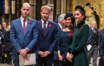 Will Princes Harry and William Bond Over Their Kids Like Meghan Markle and Kate Middleton Are?