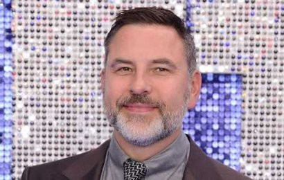 David Walliams' epic teenage throwback proves he was always life of the party