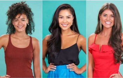 ABC Revealed 33 Potential 2020 'Bachelor' Contestants, So Grab Your Roses