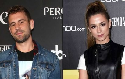 Nick Viall and Kristina Schulman Argue Over Sliding Into His Brother's DMs