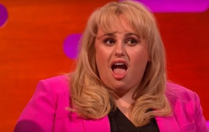 Rebel Wilson to Host Dog-Grooming Reality Show 'Pooch Perfect'