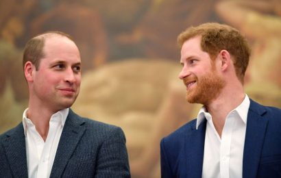Why Prince William Can't Blame Prince Harry for Wanting to Escape His Shadow
