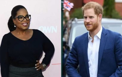 Prince Harry Reveals New Details About His Show With Oprah