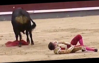 Spanish royal's bullfighting boyfriend gored twice in thigh and groin