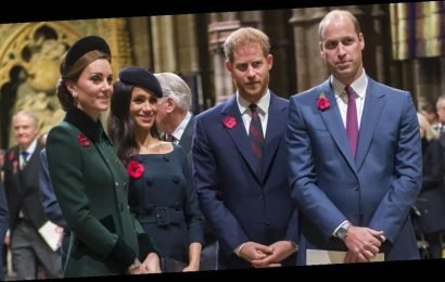 William, Kate, Harry, and Meghan Reunite For a Very Important Cause