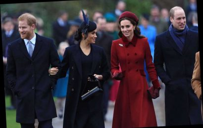 Meghan Markle, Kate Middleton And Princes Harry And William Reunite For New Project