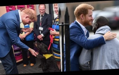 Prince Harry Marks World Mental Health Day With Kids and an Adorable Therapy Dog