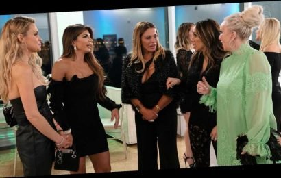 'The Real Housewives of New Jersey' Season 10 Taglines Revealed: Video