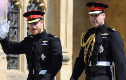 Is Prince William Really 'Furious' at Prince Harry?