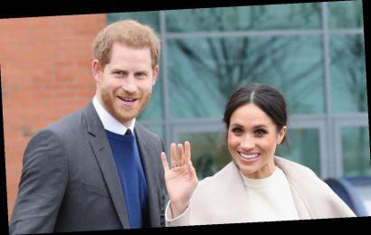 Meghan Markle's Cute Nickname for Prince Harry Revealed!