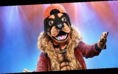 There's Only ONE Person the Rottweiler Could Be on 'The Masked Singer'