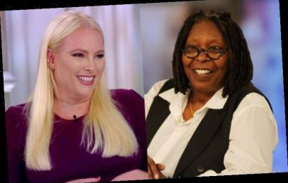 Whoopi Goldberg Shuts Down Meghan McCain, Tells Her to Respect 'The View' Co-Hosts