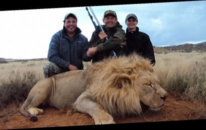 Hope for ban on sick trophy hunt imports as talks begin on ending cruel 'sport'