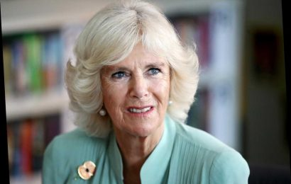 Camilla, Duchess of Cornwall Forced to Miss Library Gala Dinner After Contracting Chest Infection