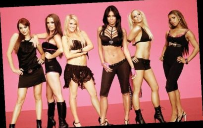 Nicole Scherzinger Fuels The Pussycat Dolls Reunion Rumors