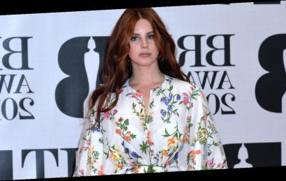 Lana Del Rey issues online plea after her family are robbed over Christmas