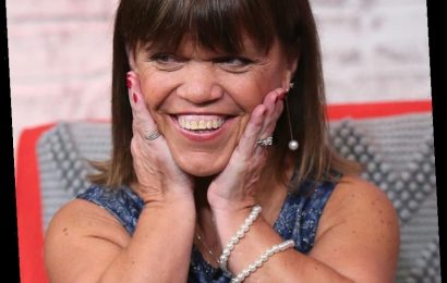 'LPBW' Fans Think Amy Roloff Looks 'Fabulous' as the Holidays Approach