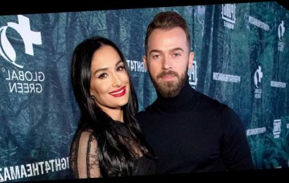 Artem Chigvintsev Taught Nikki Bella Russian to Meet His Parents