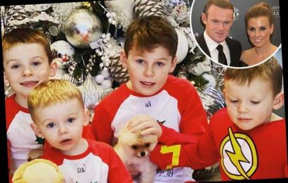 Coleen and Wayne Rooney spoil kids with a pet dog AND hamster as they put tough year behind them