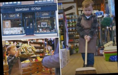 Tear-jerking Arthur Christmas advert for DIY shop in Wales that only cost £100 to make – The Sun