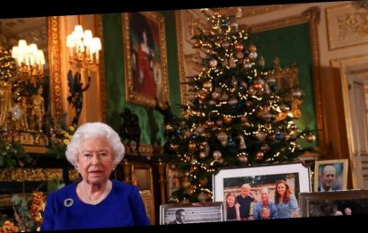 Queen Omits Photos of Princes Harry, Andrew and Meghan Markle During Speech