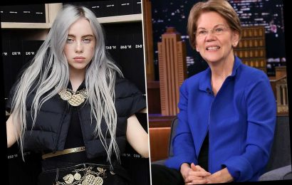 Elizabeth Warren defends Billie Eilish for not knowing Van Halen: You don't have to