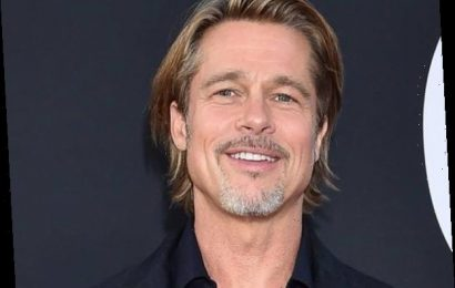 All the Details on Brad Pitt's Holiday Plans With His Kids