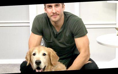 Meet 'Bachelorette' Alum Shawn Booth's Golden Retriever, Tucker Doodle Dog