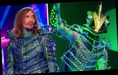 The Masked Singer: 'Who is he?' Fans gobsmacked as Chameleon's identity finally revealed