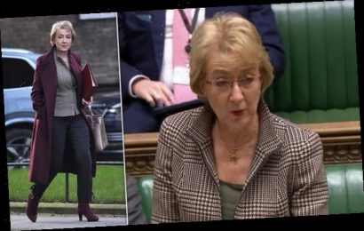 HENRY DEEDES sees Andrea Leadsom play the numbers game in the House