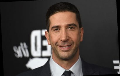 'Friends': Why David Schwimmer's Suggestion For A 'Friends' Reboot Is Not Being Taken Well
