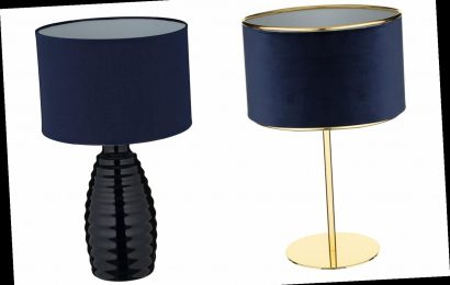 B&M has slashed the price of stylish £15 table lamps to £1 – The Sun