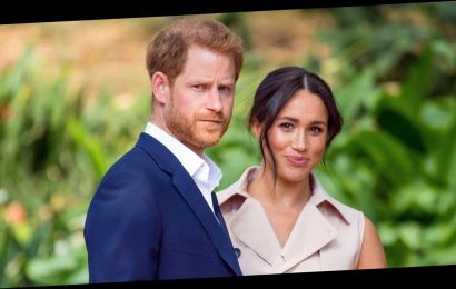Prince Harry and Duchess Meghan Reportedly Flew Their Dogs to Canada