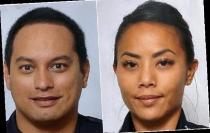 Hawaii Investigators Are Looking For The Remains Of A Suspect Who Stabbed His Landlord, Killed 2 Officers, And Started A Fire
