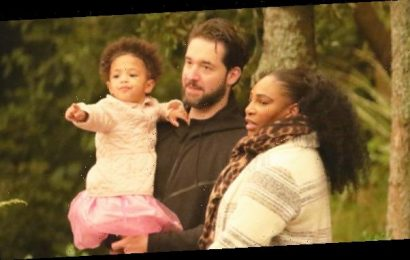Serena Williams Carries Daughter Olympia, 2, During Sweet Family Outing At The Zoo — Pics
