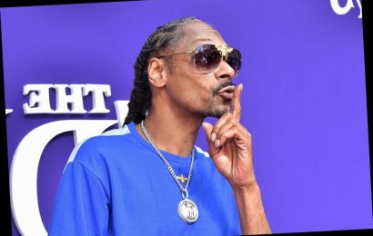 Snoop Dogg makes hip-hop lullaby album for babies