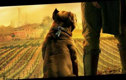 Star Trek: Picard's Dog Means Much More Than You Might Expect