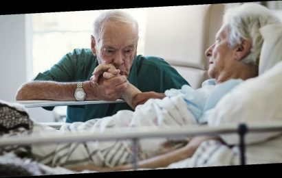 'Hospices are not places people are delivered to die – they are full of love'