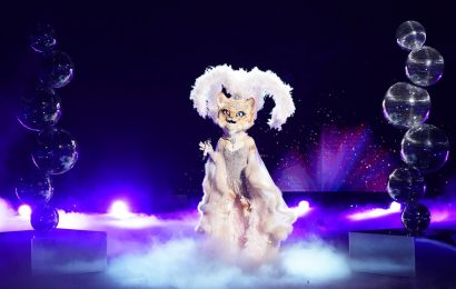 Is Sarah Hyland The Kitty On 'The Masked Singer'? Fans Are Convinced